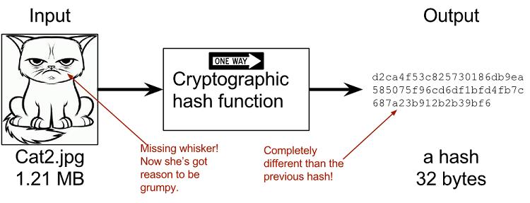 Resultado de imagen para hashes