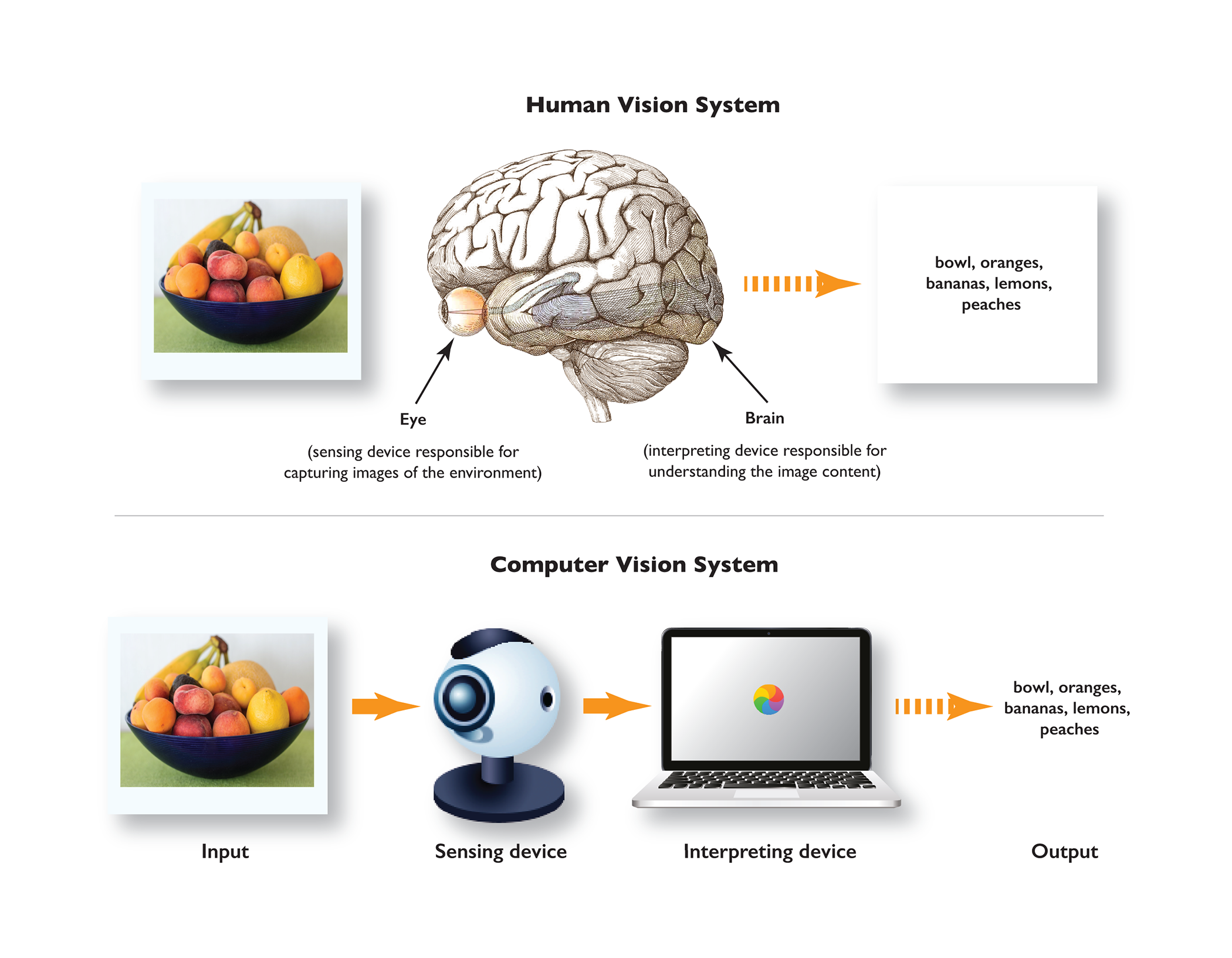 human_and_artificial_sensing