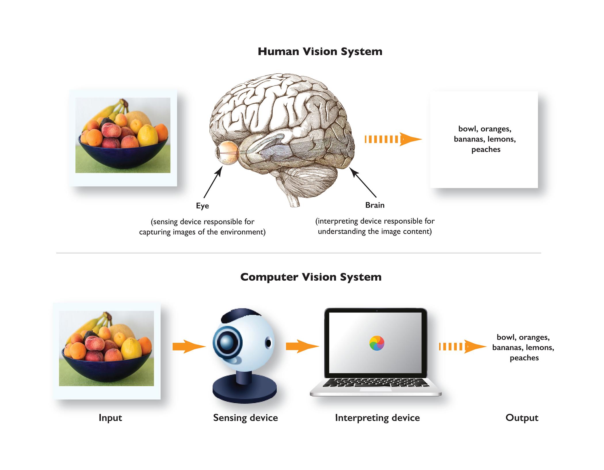 human_and_artificial_sensing
